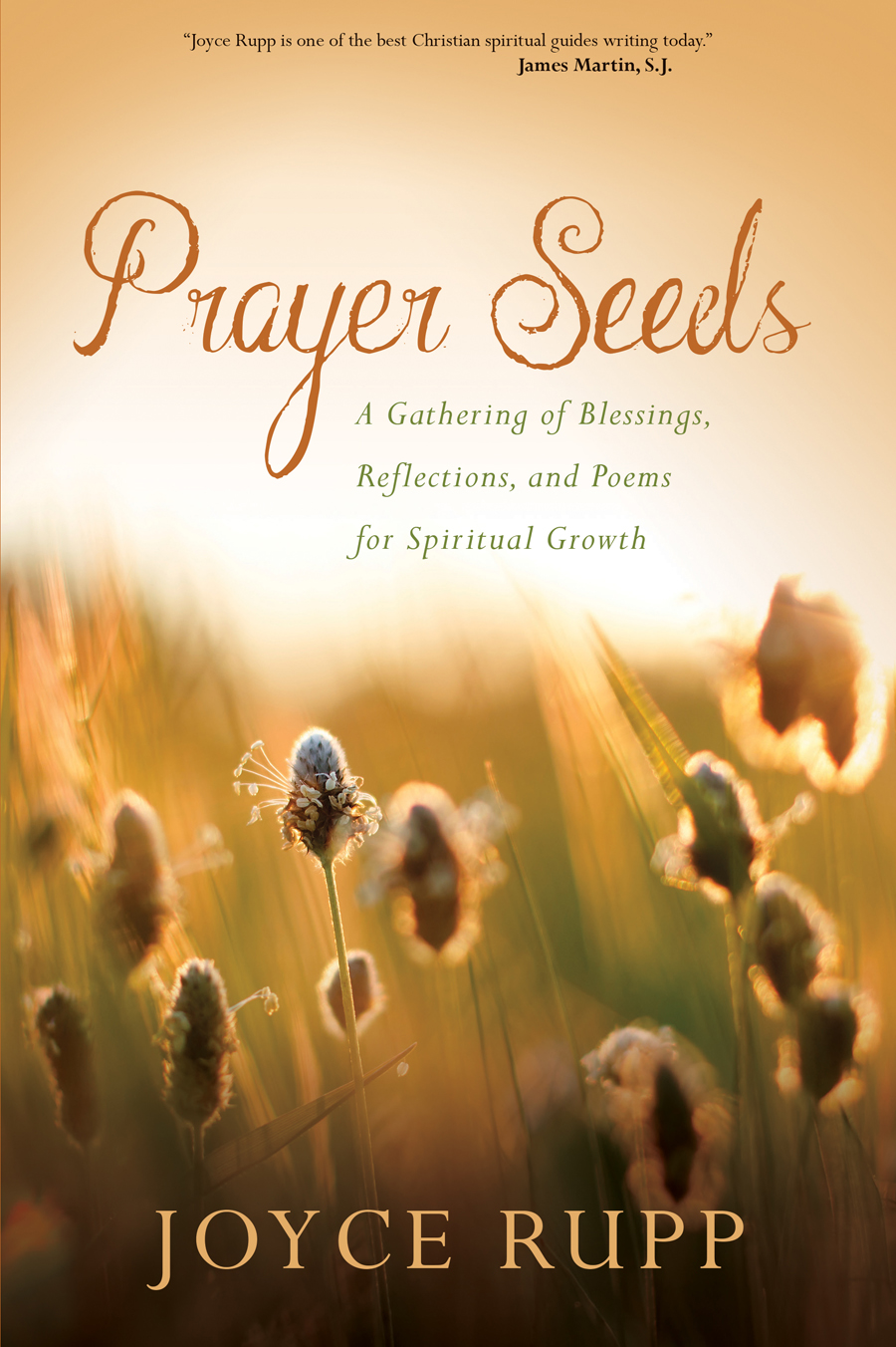 Prayer Seeds A Gathering Of Blessings Reflections And